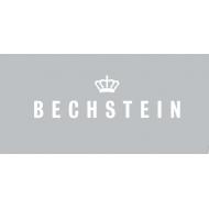 Bechstein (6)