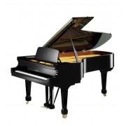 Рояль Bechstein B228