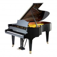 Акустические рояли (32)