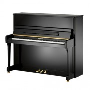 Пианино W.Hoffmann Vision V126