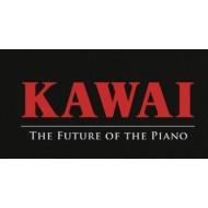 Kawai  (0)