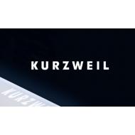 Kurzweil   (28)